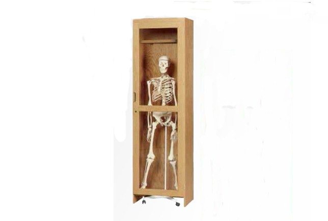 special kitchen cabinets diversified woodcraft skeleton cabinet for roll in model 2422